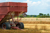 farm trailer - photo/picture definition - farm trailer word and phrase image