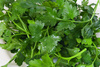 parsley - photo/picture definition - parsley word and phrase image