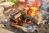 open fire cooking - photo/picture definition - open fire cooking word and phrase image