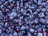 currant berries - photo/picture definition - currant berries word and phrase image