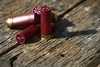 shotgun shell - photo/picture definition - shotgun shell word and phrase image