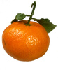 tangerine - photo/picture definition - tangerine word and phrase image
