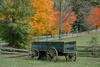 wagon - photo/picture definition - wagon word and phrase image