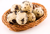 quail eggs - photo/picture definition - quail eggs word and phrase image