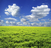landscape - photo/picture definition - landscape word and phrase image