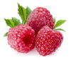 Raspberries - photo/picture definition - Raspberries word and phrase image