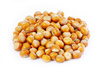 Hazelnuts - photo/picture definition - Hazelnuts word and phrase image