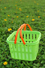 plastic basket - photo/picture definition - plastic basket word and phrase image