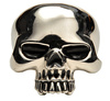 silver skull - photo/picture definition - silver skull word and phrase image