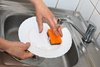 washing plate - photo/picture definition - washing plate word and phrase image