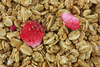 strawberry granola - photo/picture definition - strawberry granola word and phrase image