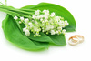 lily of the valley - photo/picture definition - lily of the valley word and phrase image