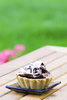 chocolate tart - photo/picture definition - chocolate tart word and phrase image
