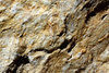 stone texture - photo/picture definition - stone texture word and phrase image