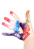 painted palm - photo/picture definition - painted palm word and phrase image