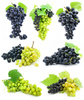 grapes - photo/picture definition - grapes word and phrase image