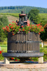 wine press - photo/picture definition - wine press word and phrase image