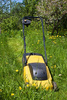lawnmower - photo/picture definition - lawnmower word and phrase image