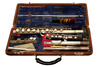 flute case - photo/picture definition - flute case word and phrase image