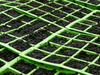 seedtrays - photo/picture definition - seedtrays word and phrase image