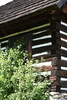 timbered cottage - photo/picture definition - timbered cottage word and phrase image