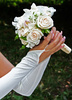 bridal roses - photo/picture definition - bridal roses word and phrase image