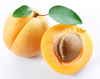 apricot - photo/picture definition - apricot word and phrase image