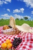 picnic - photo/picture definition - picnic word and phrase image
