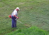 cutting grass - photo/picture definition - cutting grass word and phrase image