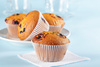 blueberry muffins - photo/picture definition - blueberry muffins word and phrase image