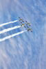 synchronous flight - photo/picture definition - synchronous flight word and phrase image