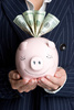 piggy bank - photo/picture definition - piggy bank word and phrase image
