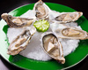 oyster - photo/picture definition - oyster word and phrase image
