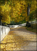 autumn park - photo/picture definition - autumn park word and phrase image