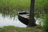 wooden boat - photo/picture definition - wooden boat word and phrase image