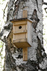 birdhouse - photo/picture definition - birdhouse word and phrase image