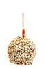 caramel apple - photo/picture definition - caramel apple word and phrase image