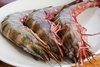 prawns - photo/picture definition - prawns word and phrase image