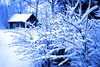 snow - photo/picture definition - snow word and phrase image