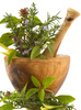 herbs - photo/picture definition - herbs word and phrase image