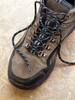 hiking boot - photo/picture definition - hiking boot word and phrase image