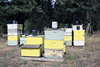bee houses - photo/picture definition - bee houses word and phrase image
