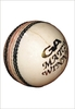 cricket ball - photo/picture definition - cricket ball word and phrase image