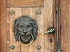 lion knocker - photo/picture definition - lion knocker word and phrase image