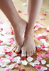 feet - photo/picture definition - feet word and phrase image