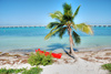 paradise holiday spot - photo/picture definition - paradise holiday spot word and phrase image
