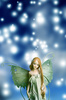 elf fairy - photo/picture definition - elf fairy word and phrase image