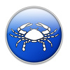 astrological scorpio - photo/picture definition - astrological scorpio word and phrase image