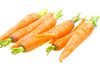 carrots - photo/picture definition - carrots word and phrase image