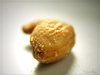 nuts - photo/picture definition - nuts word and phrase image